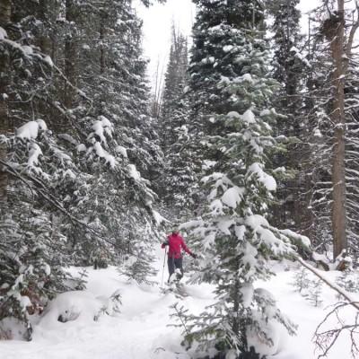colorado-winter-vacation-ski-snow