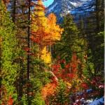 romance-colorado-rockies-autumn-fall