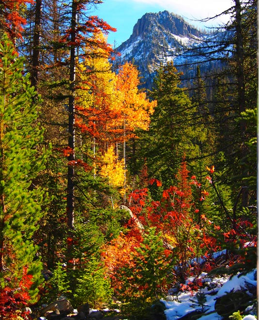 romance-colorado-rockies-autumn-fall