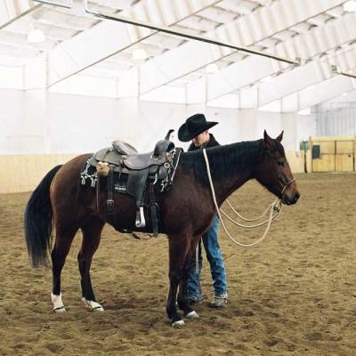 vista-verde-colorado-vacation-winter-horse-program-02