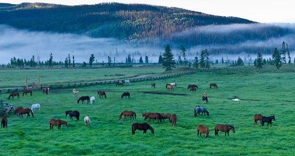 Colorado luxury dude ranch vacation