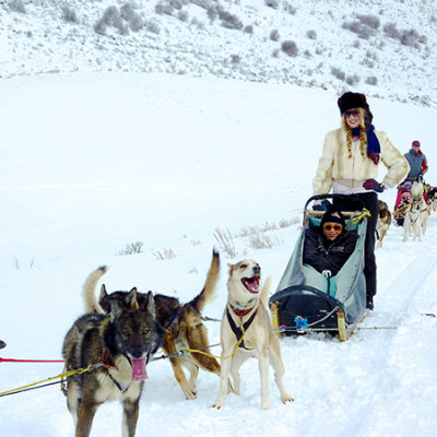 dogsledding-Colorado-vacation