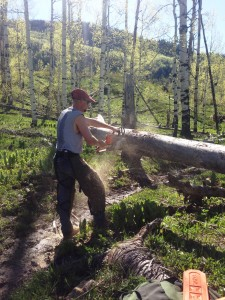 Nathan clearing a trail- so many trees were down this spring!