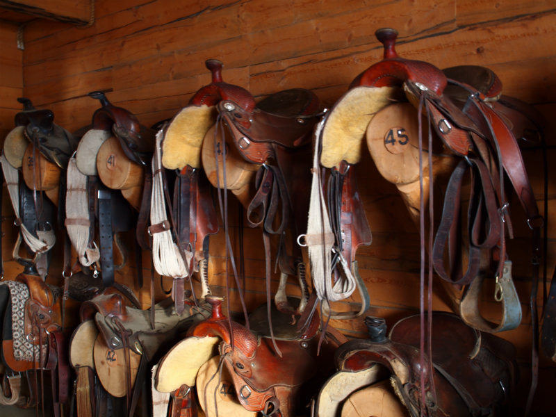 A look inside the tack room at Vista Verde Guest Ranch, located near Steamboat Springs Colorado!