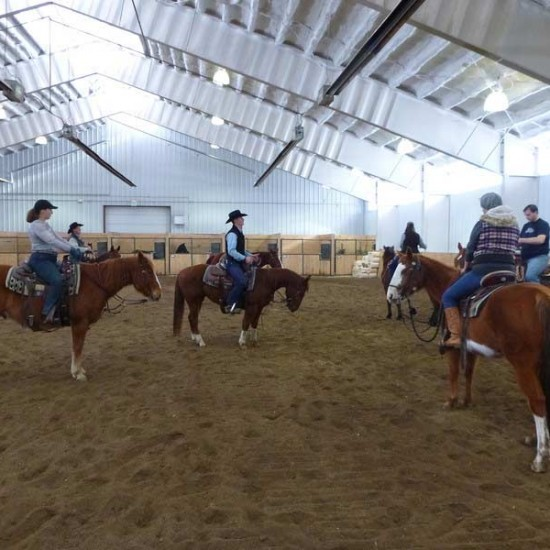 Vista Verde Ranch Colorado Indoor Arena Horses