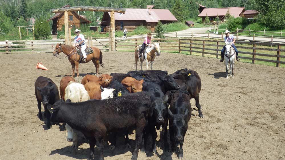 Vista Verde Ranch Colorado Outdoor Arena