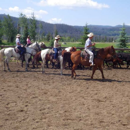 Vista Verde Ranch Colorado Outdoor Arena