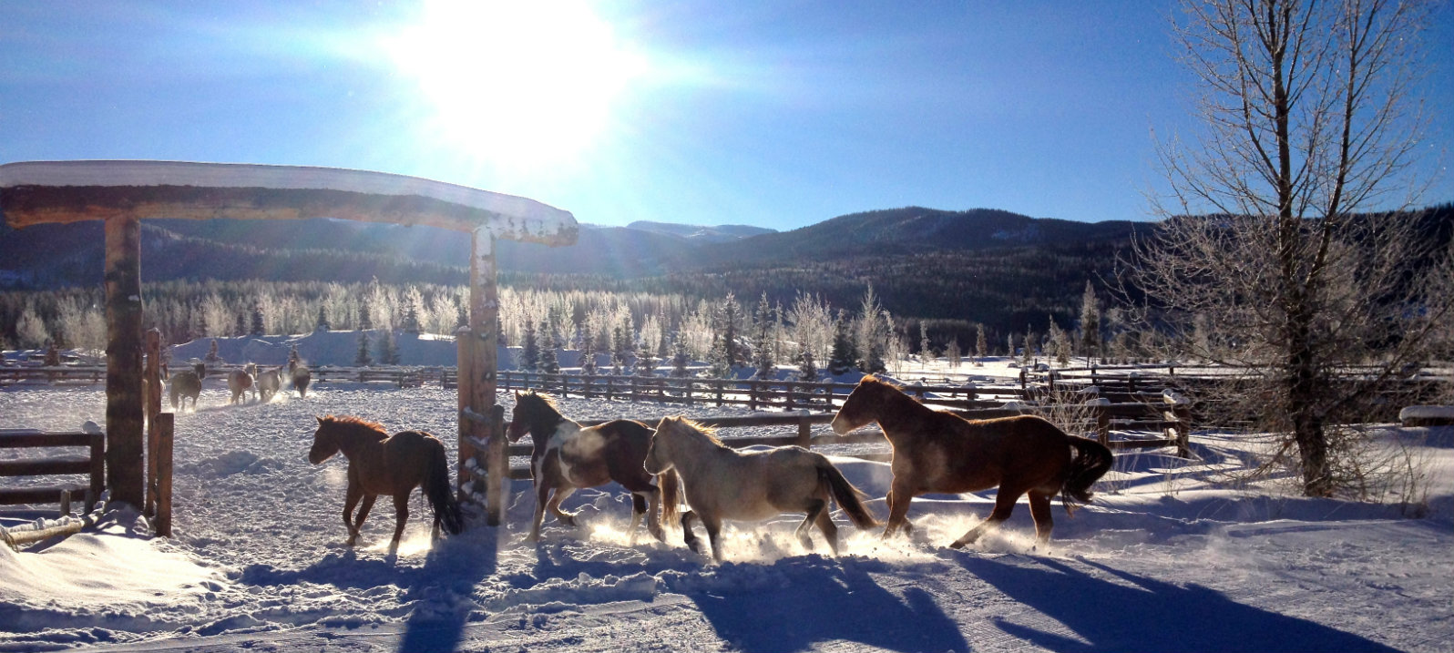 vista verde ranch winter all inclusive rates - Colorado Christmas Vacation