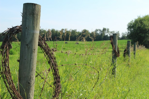 history of ranch fencing in the West