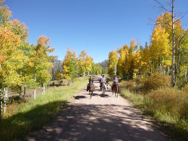 trail riding vacation in Colorado
