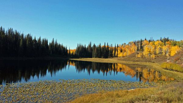 fall vacation in Colorado