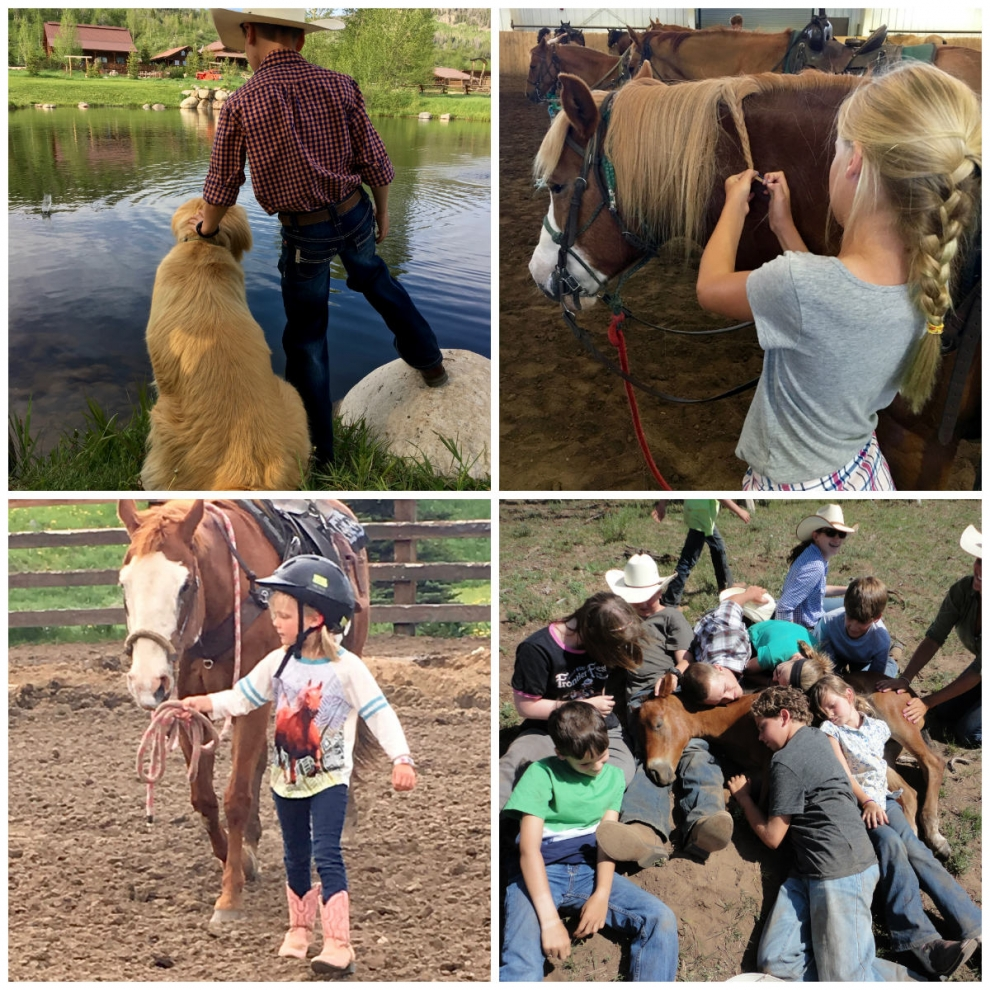 animals and kids at a family dude ranch vacation