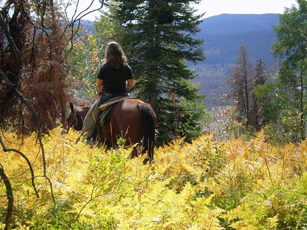 Autumn Vacation Fall Foliage Mountain Colorado Guest Ranch Vista Verde Aspens