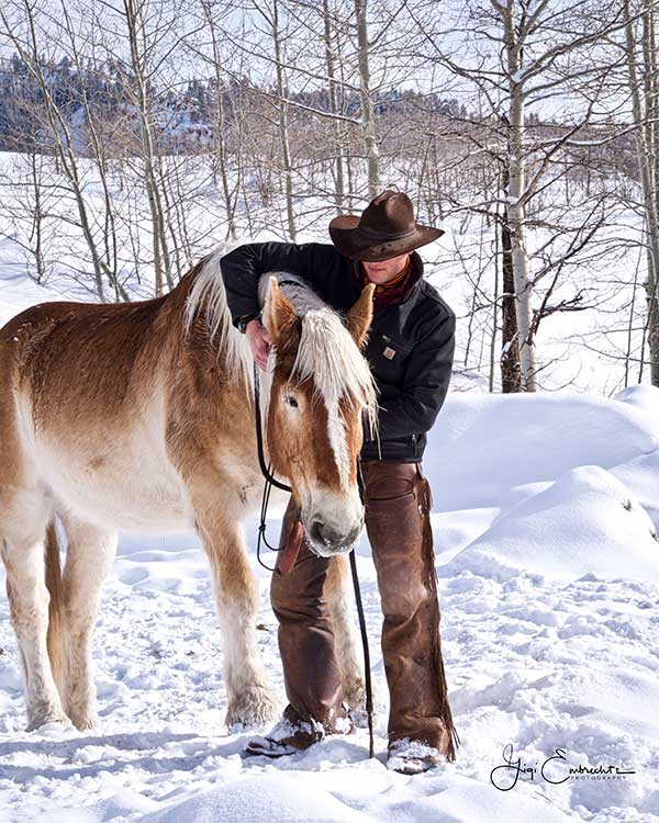 Horses Cowboys Wranglers Horseback Riding Colorado Guest Ranch Vista Verde