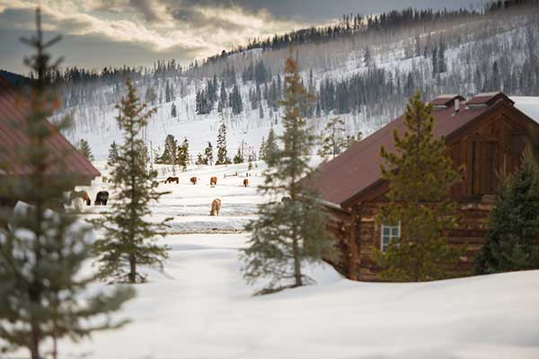 Luxury Colorado Vacation Guest Ranch Vista Verde Romance