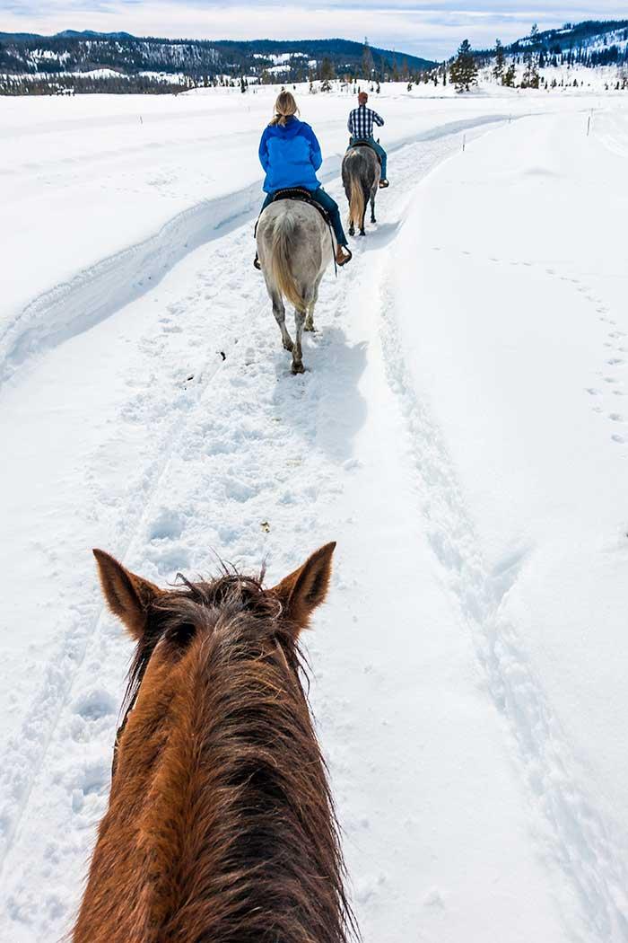 Contact a Colorado Guest Ranch, Vista Verde Ranch