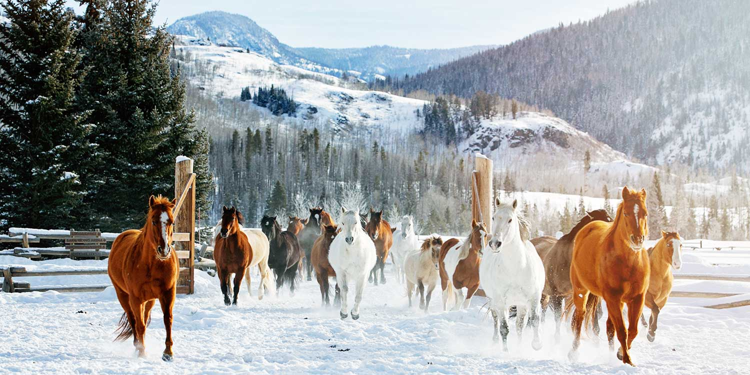 Vista Verder Luxury Guest Ranch Colorado Winter Vacation