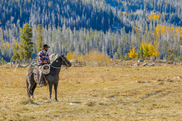 riding a horse on vacation in Colorado in October